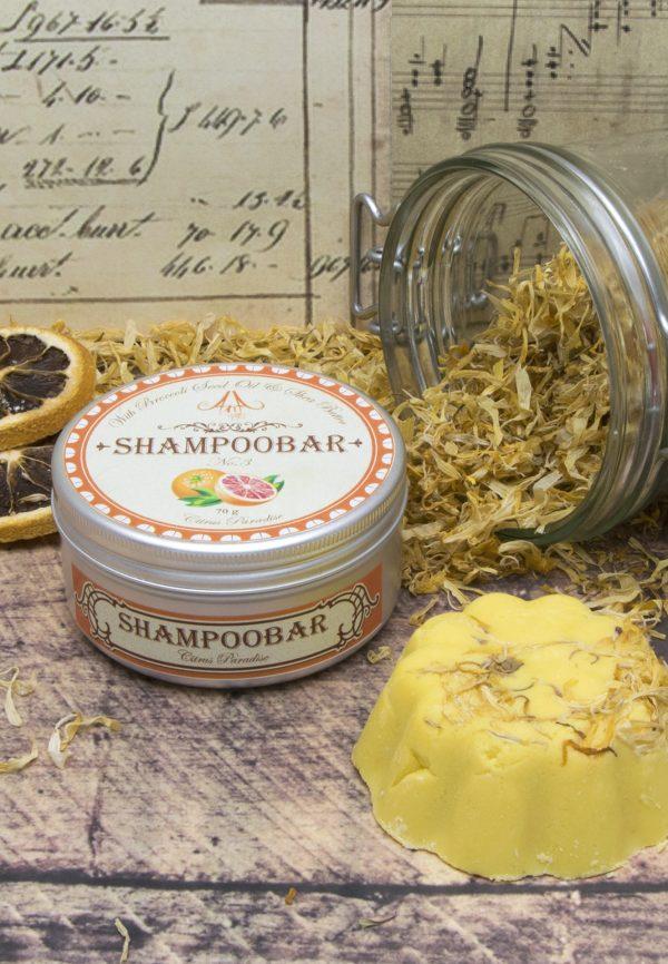 shampoobar_körömvirág